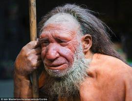 Neanderthal image from Daily News article
