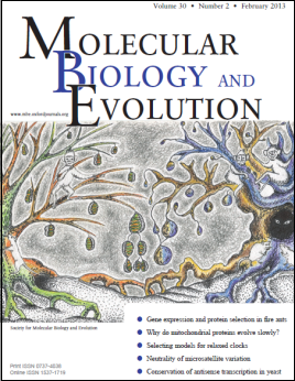 MBE cover image